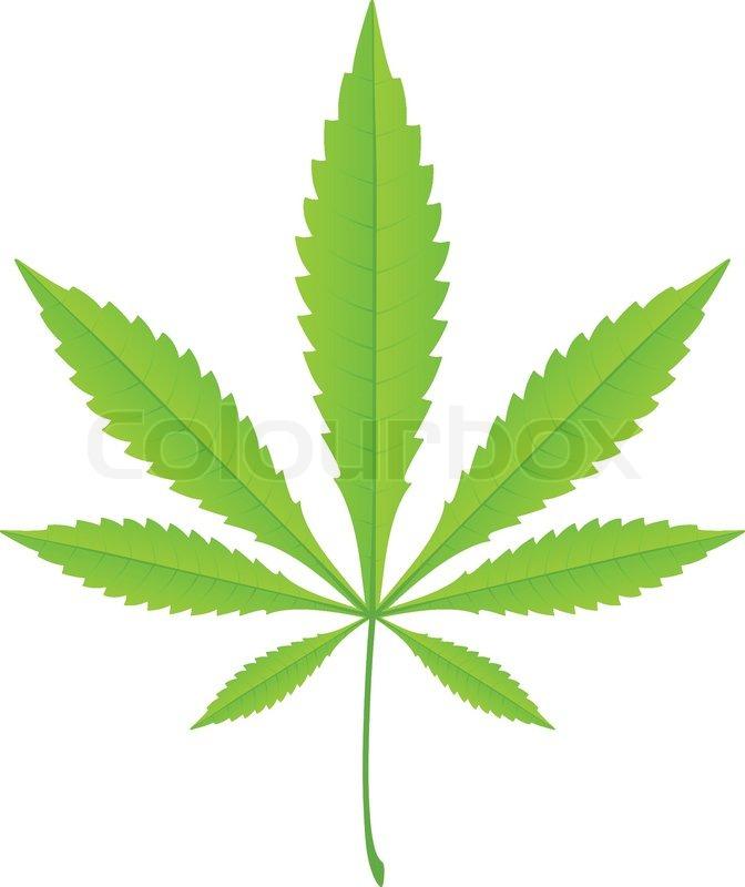 Marijuana Stock Images RoyaltyFree Images   Shutterstock