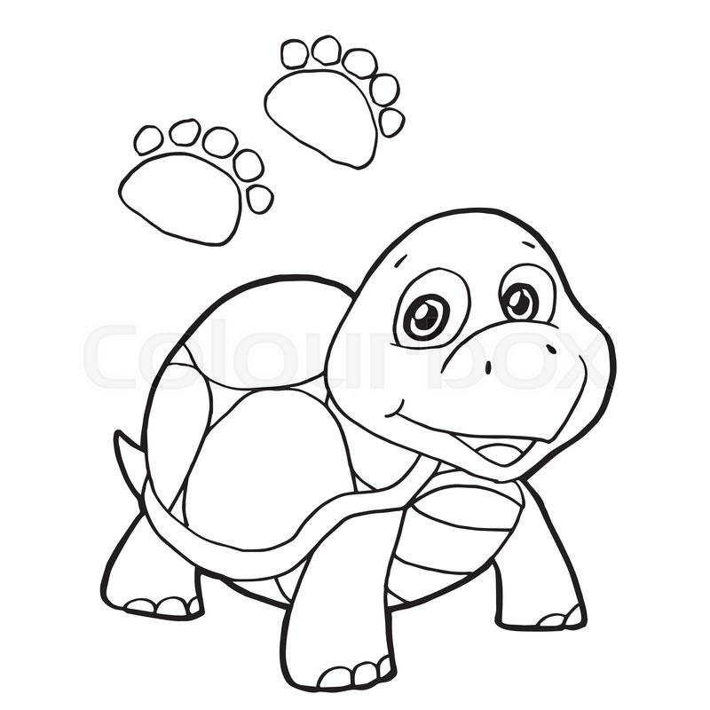 turtle shell template printable | datariouruguay