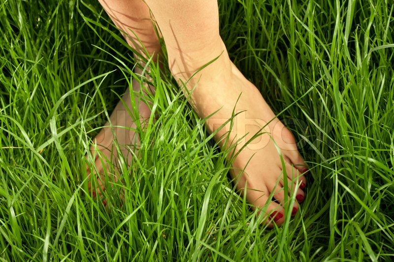 "beautiful feet photo nature в""– 11806"