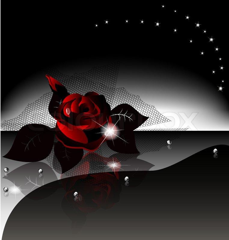 Black rose black background