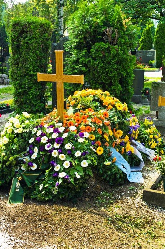Что сажают на могиле 11