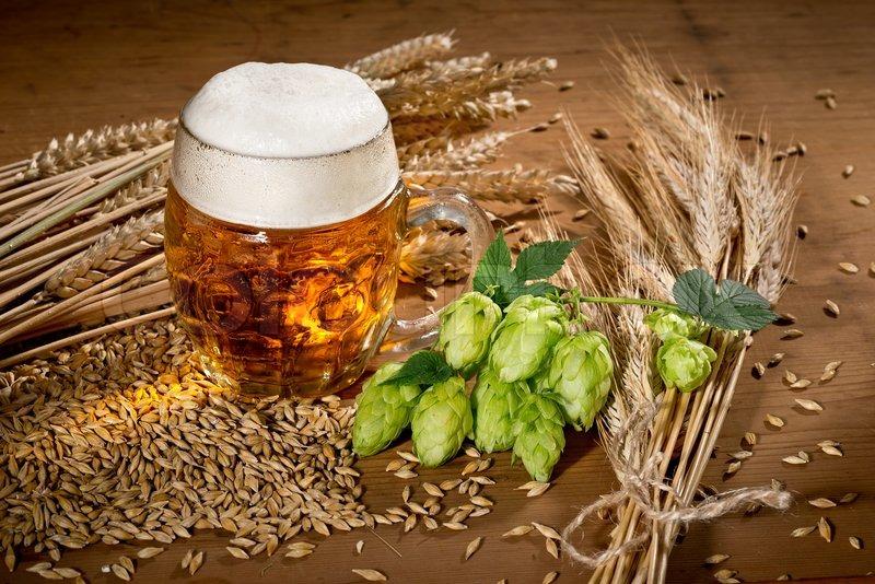Как сделать домашнее пиво из хмеля в домашних условиях