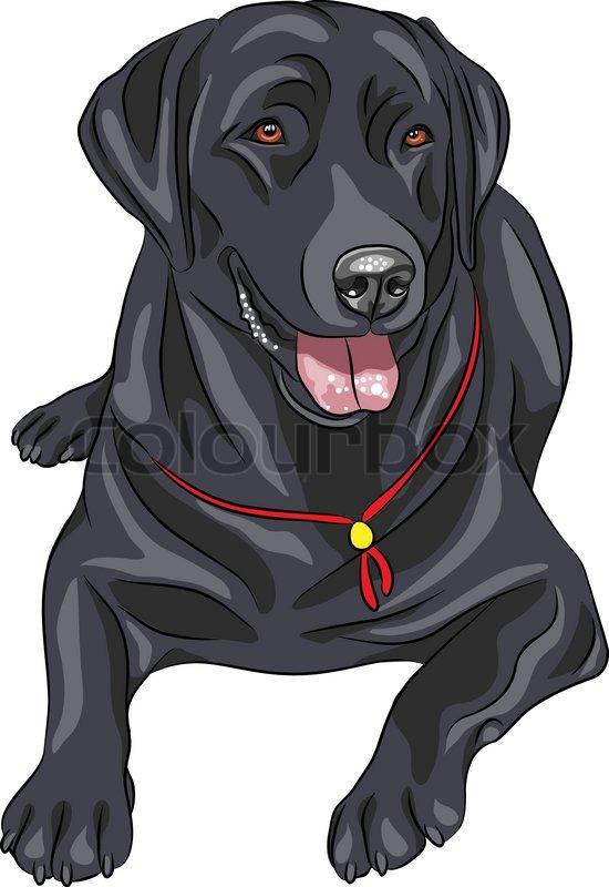 Рисовать чёрных собак