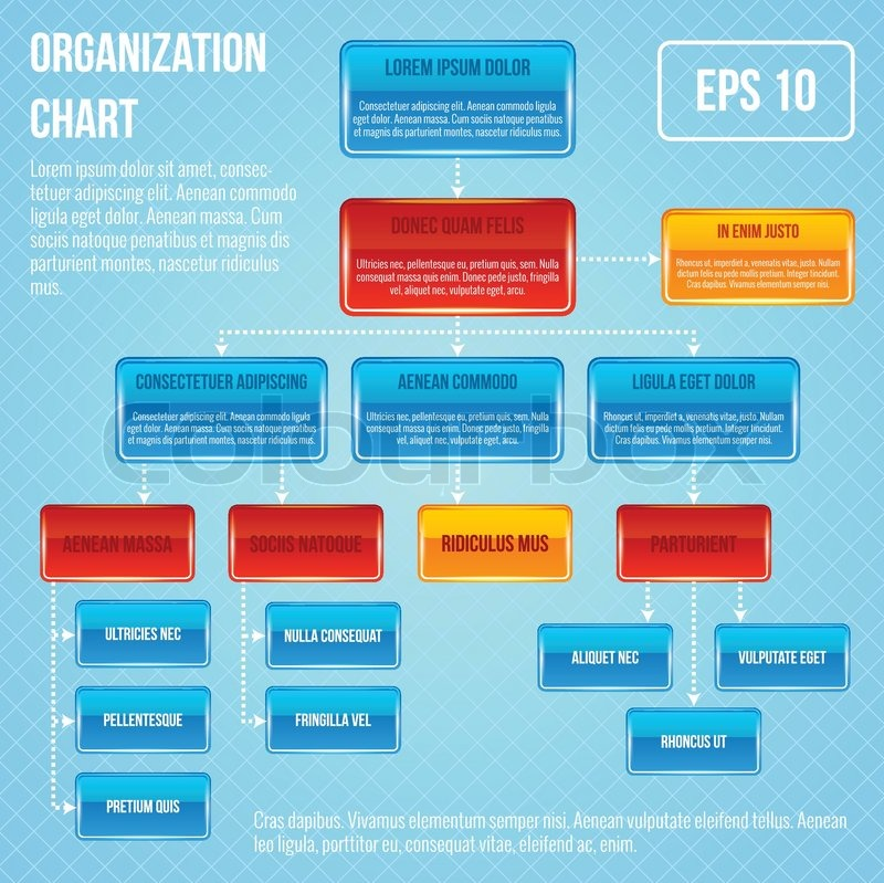 Organizational chart infographic business work hierarchy flowchart organizational chart infographic business work hierarchy flowchart structure vector illustration stock vector colourbox ccuart Image collections