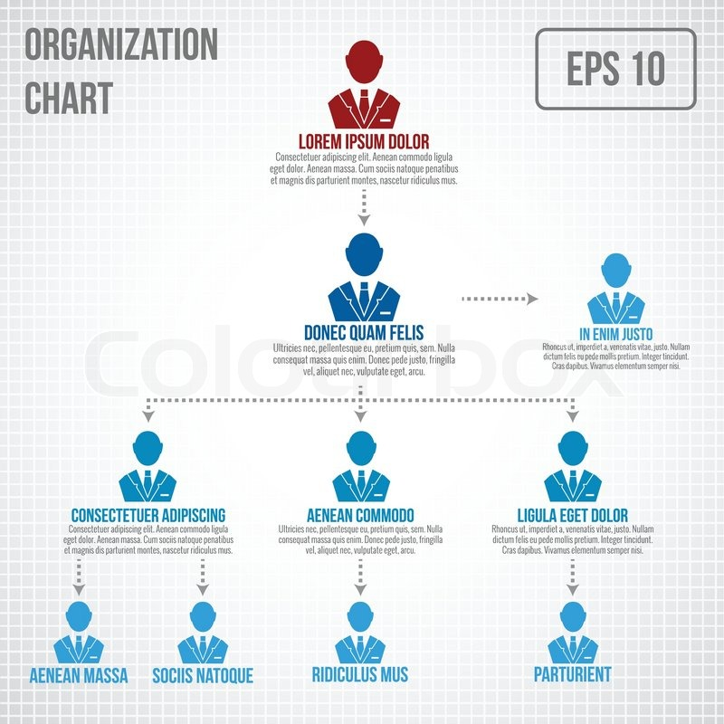 Organizational Chart Infographic Business Hierarchy Boss