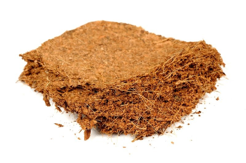 sawdust as a medium for growing If sawdust is unavailable you also can boil or steam the growing medium in a pot of water in the kitchen or over a campfire, with or without a steamer basket.