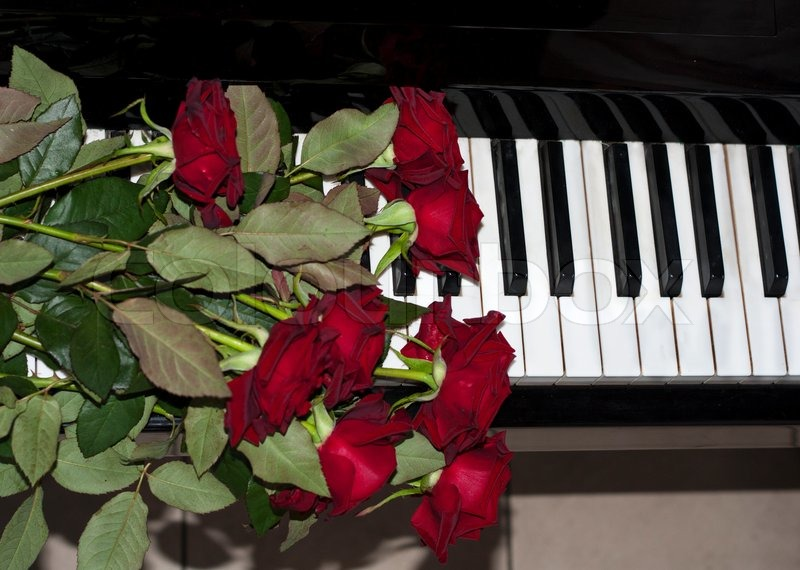 Red Rose Flowers On Piano Keyboard Photo Stock Photo