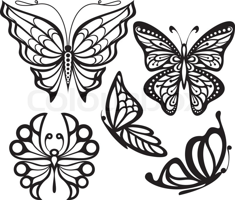 silhouette butterfly with open wings and delicate an image in profile black and white drawing. Black Bedroom Furniture Sets. Home Design Ideas
