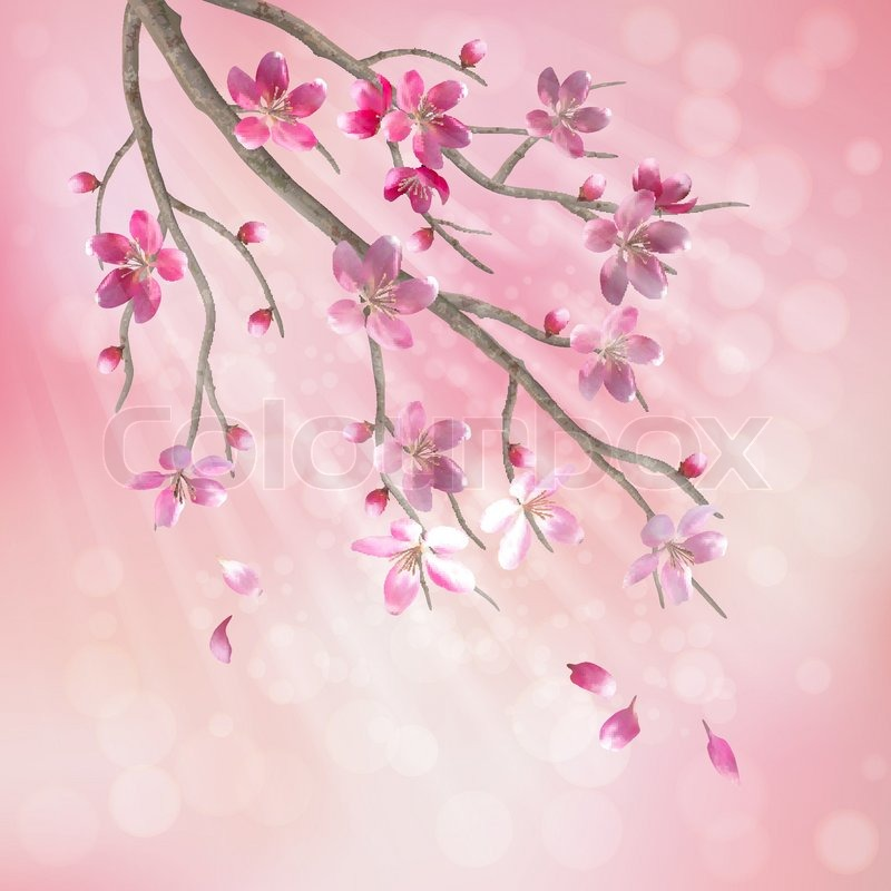Spring vector tree branch cherry blossom flower floral artistic floral artistic design with beautiful pink cherry plum blooming flowers tree branch fallen petals sun rays light effect on pastel blur background mightylinksfo