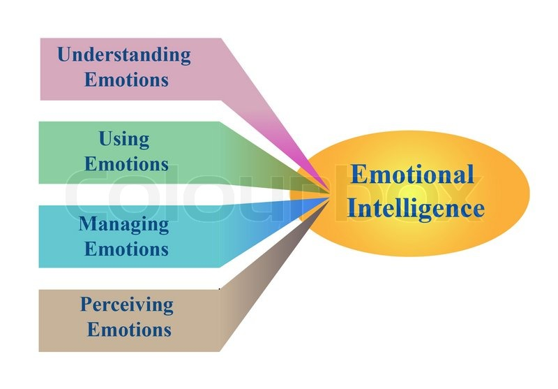 role of emotional intelligence International journal of business and social science vol 3 no 21 november 2012 241 the role of emotional intelligence on job performance.