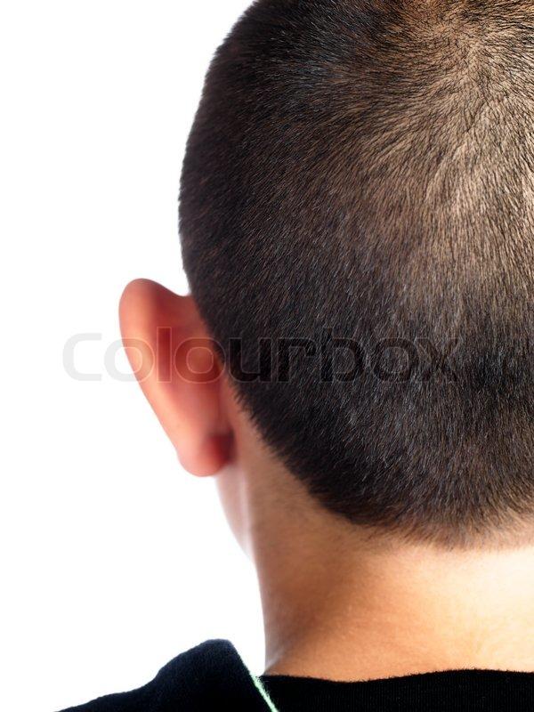 Back Of A Boys Head With Crewcut Stock Photo Colourbox