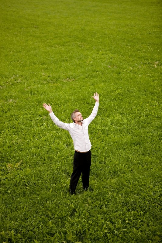 grass field from above. A Businessman With His Arms Raised Above While Standing On Grass Field |  Stock Photo Colourbox From