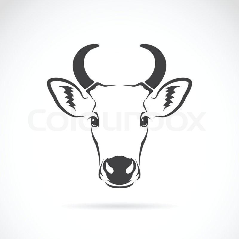Vektor-Bild von einer Kuh-Kopf | Vektorgrafik | Colourbox