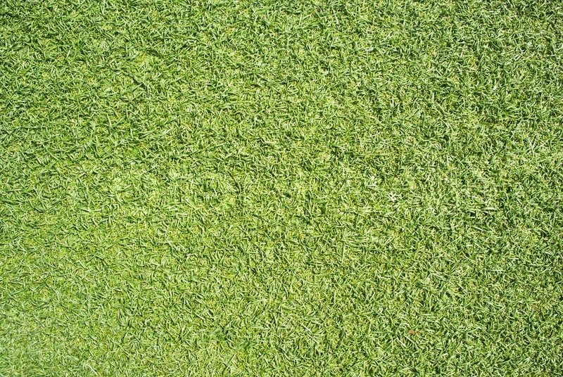 Artificial Grass Field Texture, Top ...