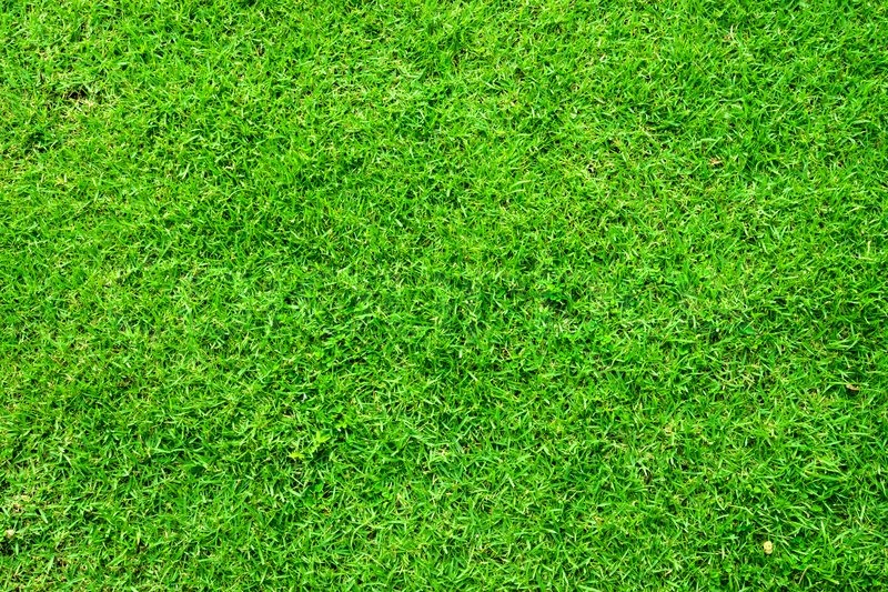 artificial turf texture. Green Artificial Turf Pattern ,texture For Background | Stock Photo Colourbox Texture