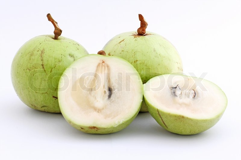 star apple Star apple is a rather unknown but beautiful tree with leaves that are golden brown on the underside, which is why it is also called golden leaf tree.