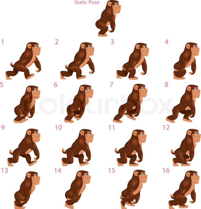 Animation of gorilla walking. Sixteen walking frames + 1 static pose ...