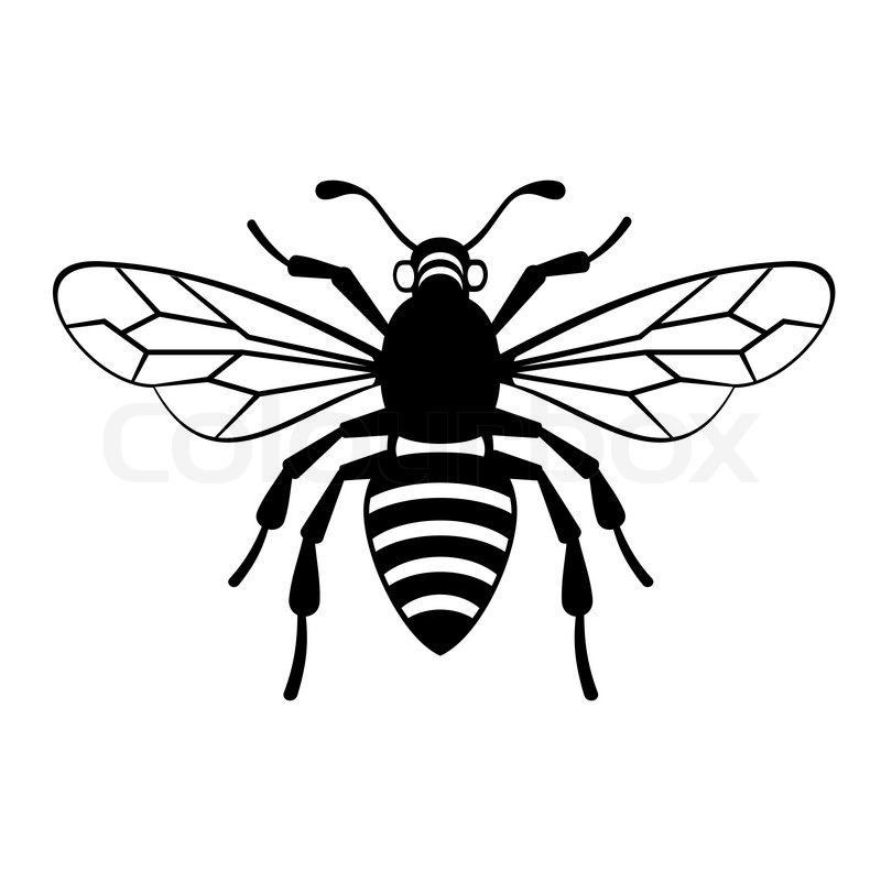 Line Art Bee : Bee icon on white background vector illustration stock