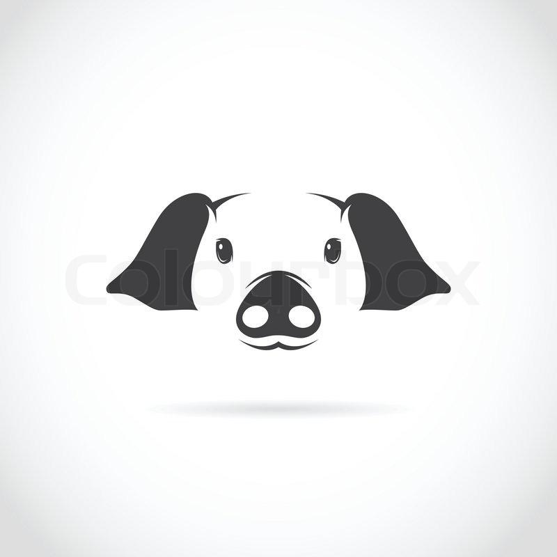 Vektor-Bild der Schweinekopf | Vektorgrafik | Colourbox