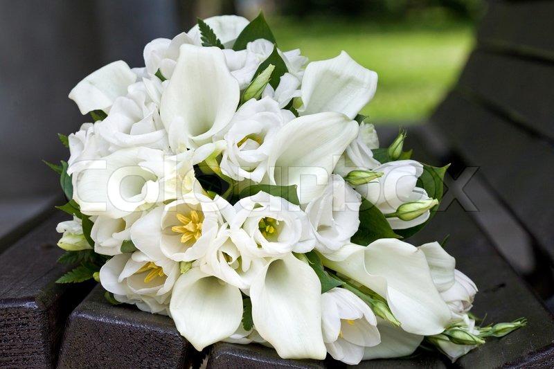 brautstrauss calla lilien und tulpen blumen f r die hochzeitszeremonie stock foto colourbox. Black Bedroom Furniture Sets. Home Design Ideas