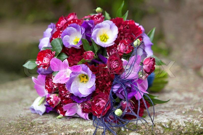 Hochzeitsstrauss Bouquet Von Frischen Stockfoto Colourbox
