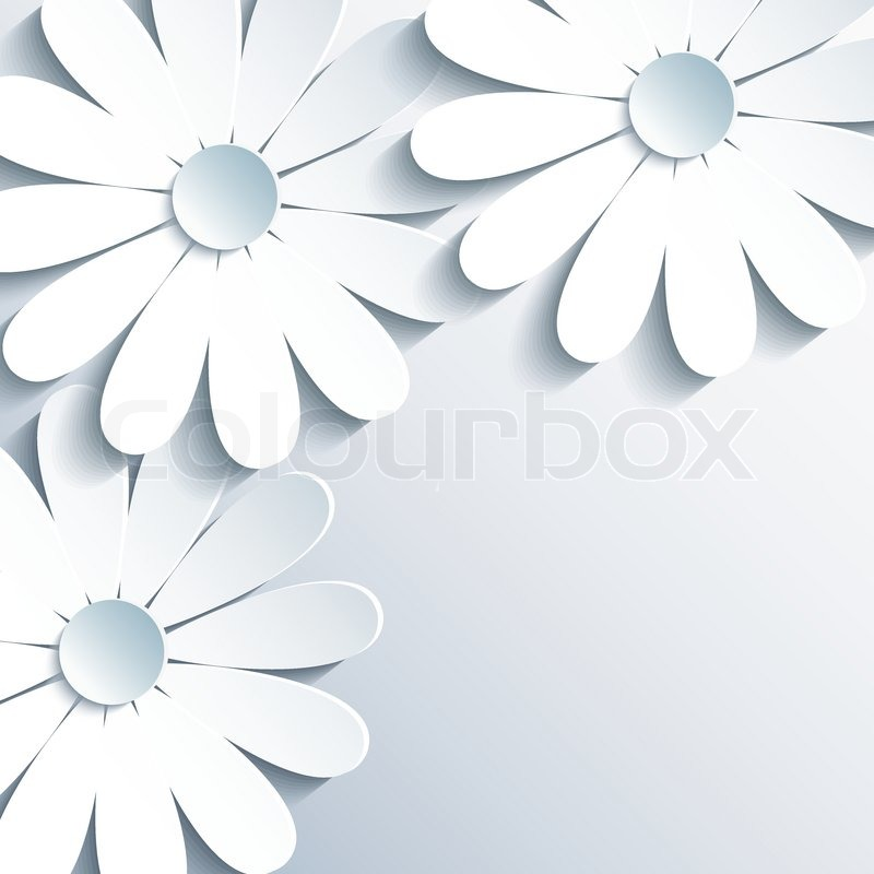 Beautiful Grey Wallpaper With 3d White Chamomile Creative Modern Abstract Background Greeting Or Invitation Card For Life Events Vector Illustration