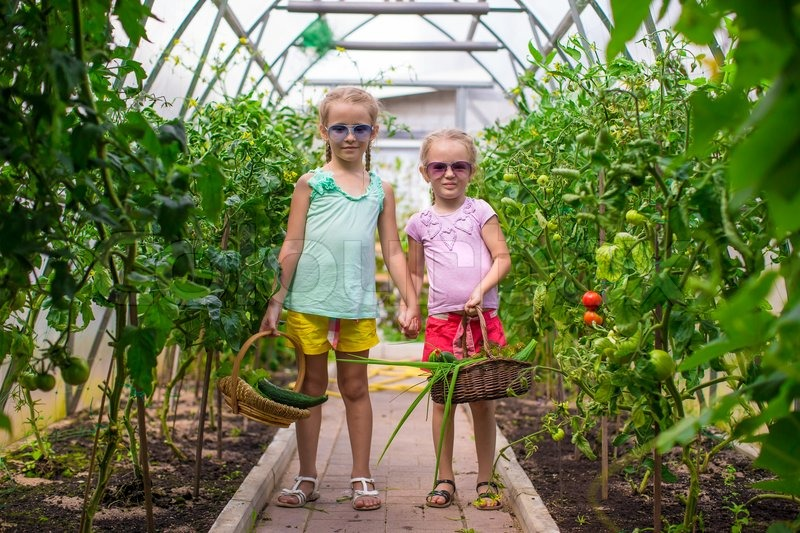 Cute Little Greenhouses Cute Little Girls Collects The