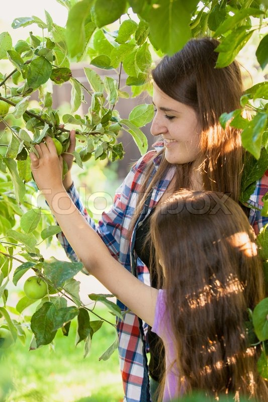Portrait of smiling girl with mother picking green apple from tree, stock photo