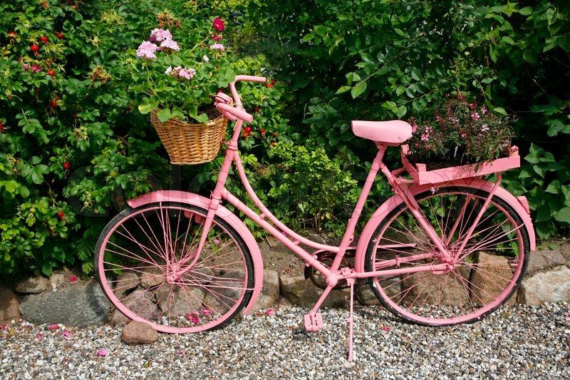 altes weibliches fahrrad lackiert rosa stockfoto colourbox. Black Bedroom Furniture Sets. Home Design Ideas