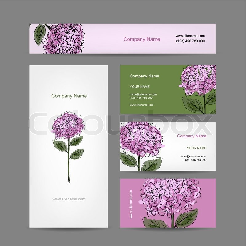 Set of business cards design with hydrangea flower, vector ...