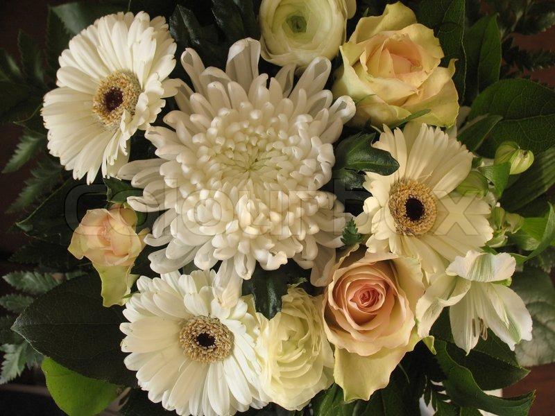 Nice off white bunch of flowers stock photo colourbox mightylinksfo