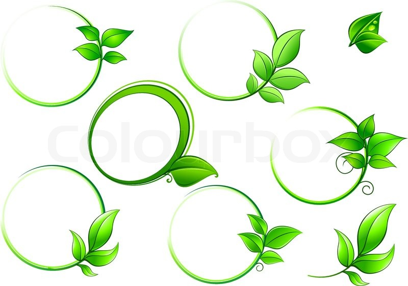 Green Round Frames With Leaves Isolated On White Background For