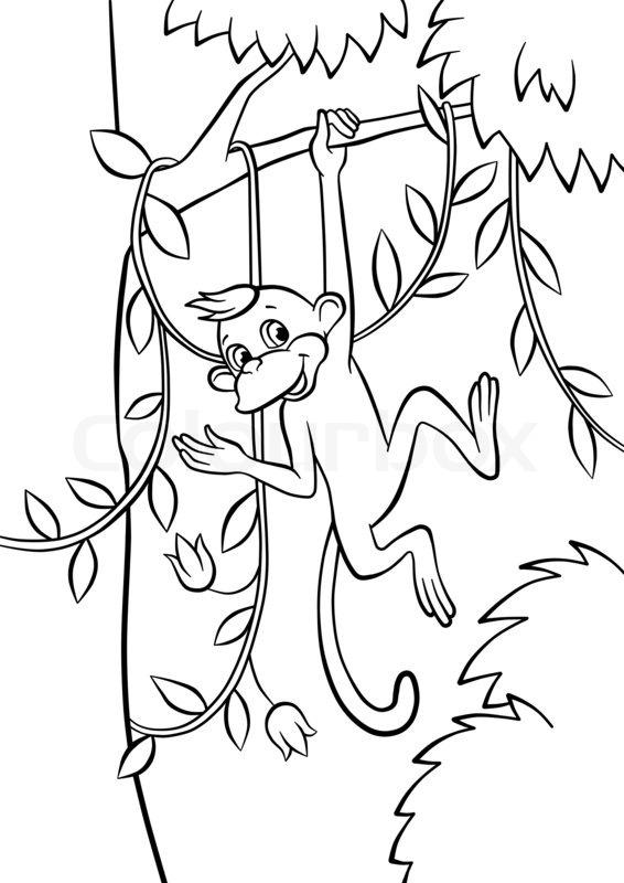 Cute Little Monkey Swinging On The Tree