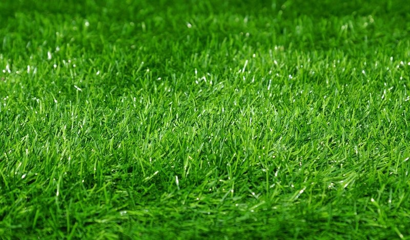 green grass football field soccer green football field grass background selective focus at the center stock photo colourbox center