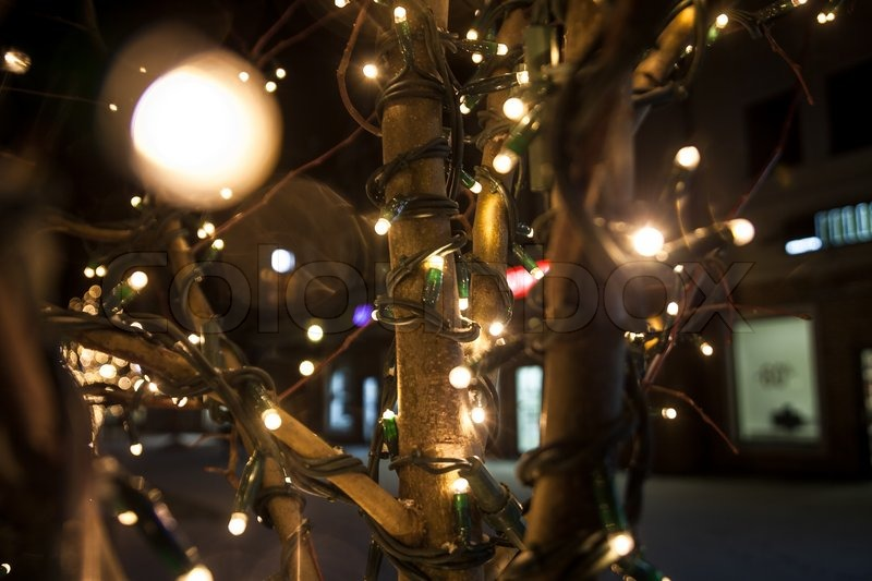 Tree on street decorated with bright sparkling lights, stock photo