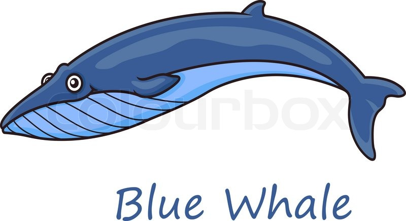funny cute cartoon blue whale isolated on white background for nautical wildlife and ecology design vector