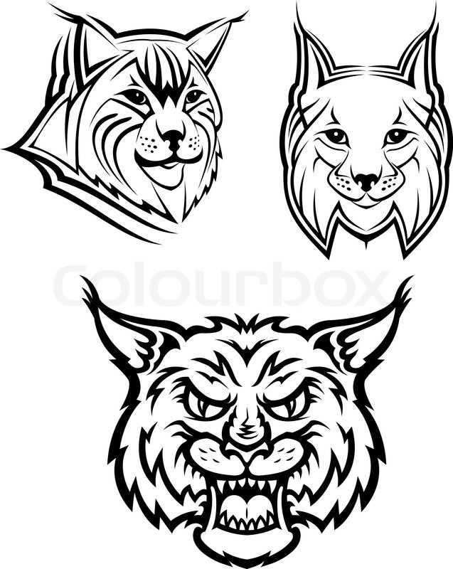 Head Logo Of A Wild Bobcat Or Lynx For