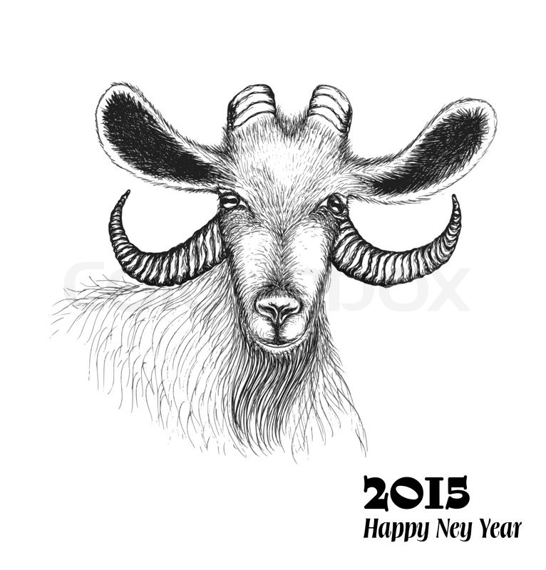chinese zodiac sign goat in a sketch style symbol of 2015 new year isolated on white background vector illustration stock vector colourbox - Chinese New Year 2015 Animal