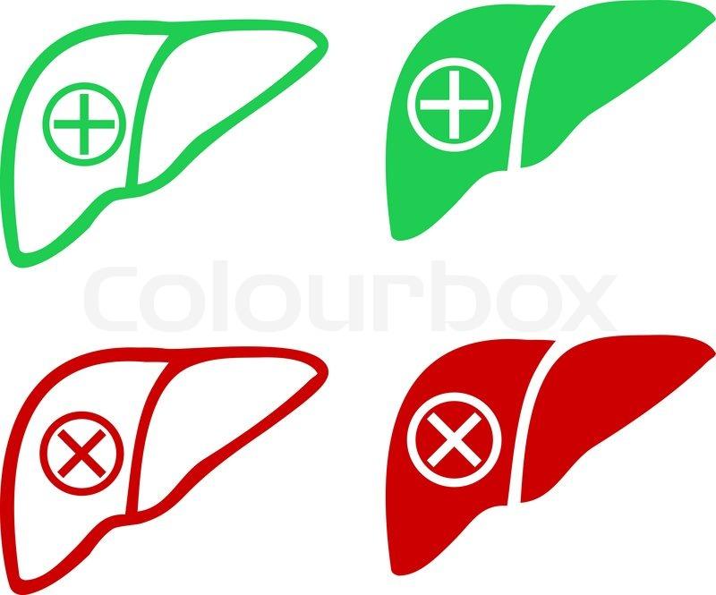 Menschliche Leber Icon-logo | Vektorgrafik | Colourbox