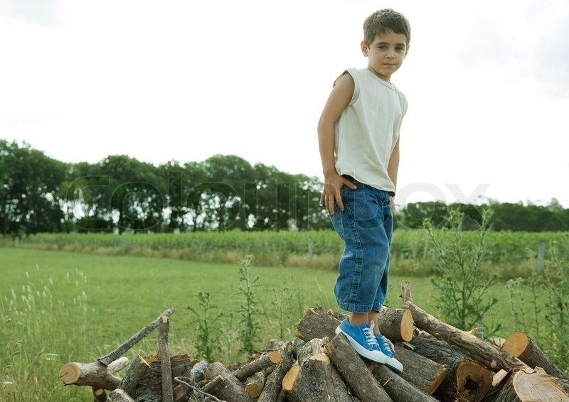 portrait of a boy standing on wood pile stock photo colourbox