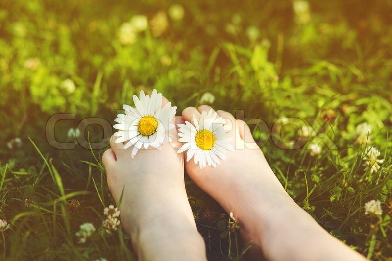 Kind Füße mit Gänseblümchen-Blume auf grünem Gras in einem Sommer ...