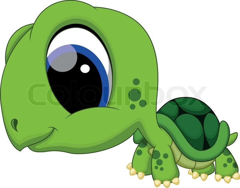 Cute Baby Turtle Cartoon Stock Vector Colourbox