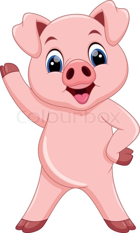 cartoon pigs are cute and adorable stock vector colourbox