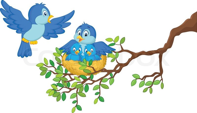 cartoon bird nest in tree wwwpixsharkcom images