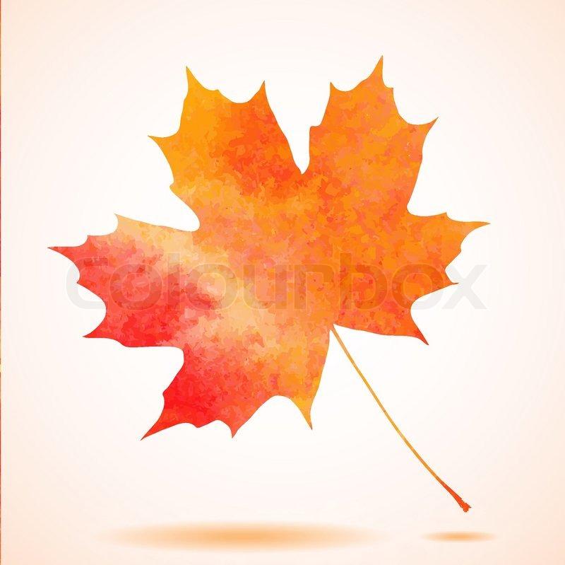 Orange Watercolor Painted Vector Autumn Maple Leaf
