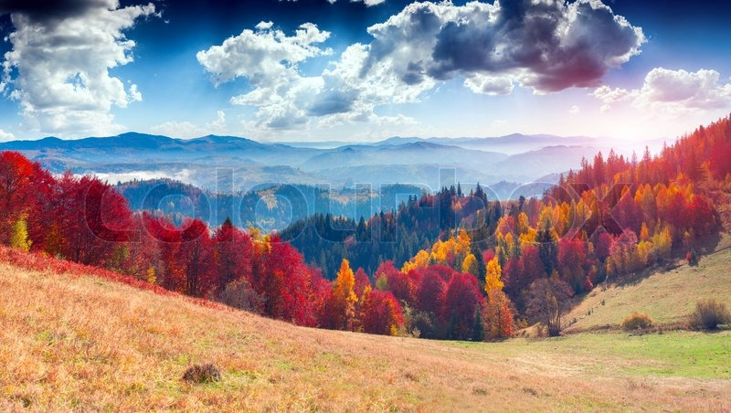 Colorful autumn landscape in the mountain village. Foggy morning in the Carpathian mountains. Sokilsky ridge, Ukraine, Europe, stock photo
