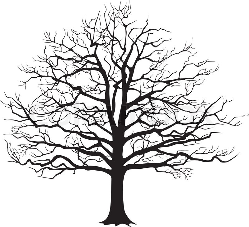 Black silhouette of a bare tree vector illustration - Dessin arbre nu ...