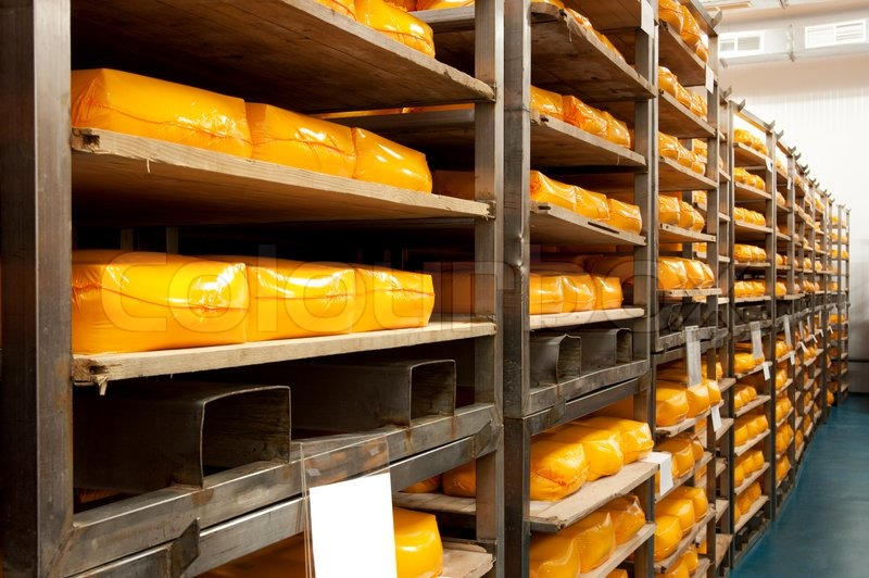 Industrial production of hard cheeses. Cheese is very tasty and healthy product, stock photo