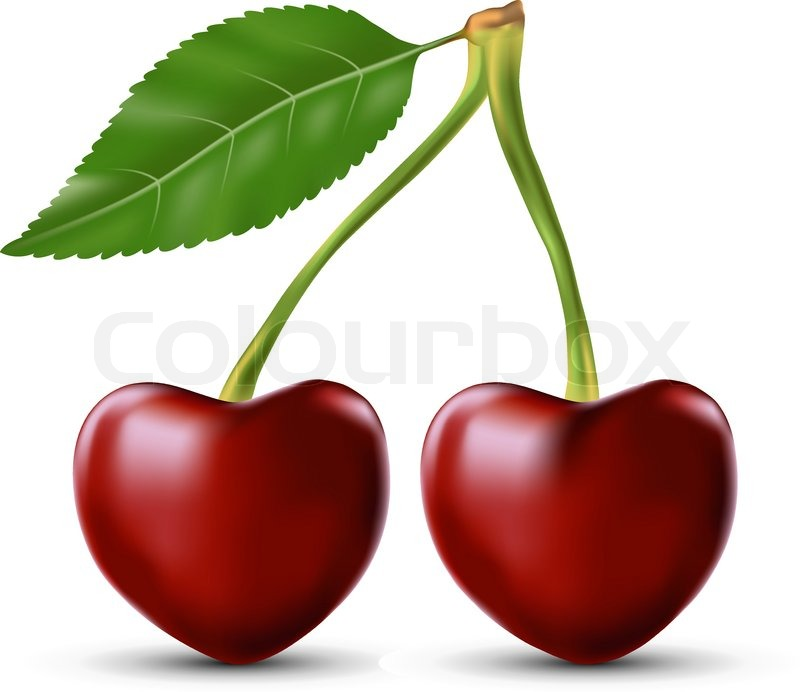 Two Lovers Cherry As The Heart Symbol Of Love Stock Vector Colourbox