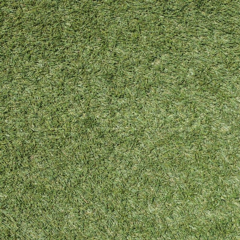 Green grass soccer field texture and background, stock photo